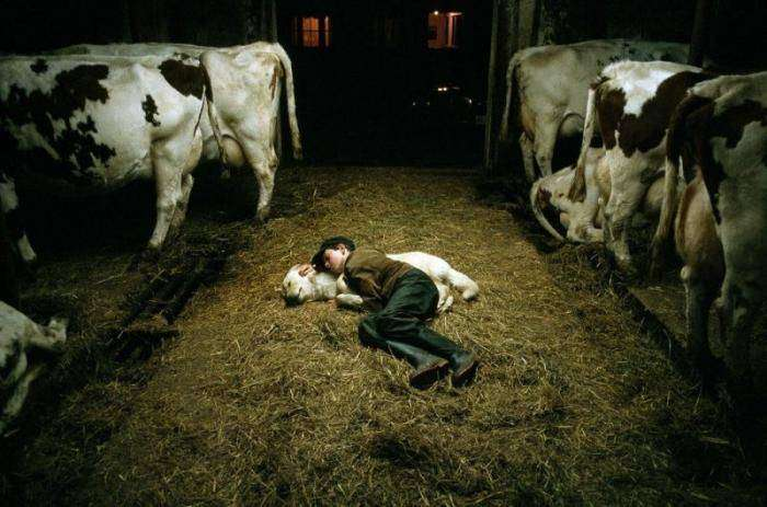 Спокойный сон в разных странах мира (17 фото)