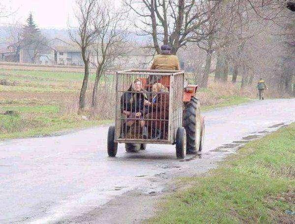 Пьяные трактористы (31 фото)
