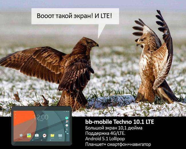 Все как у людей: если бы звери рекламировали планшеты (7 фото)
