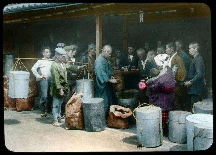 Чайная история из Японии сто лет назад (17 фото)