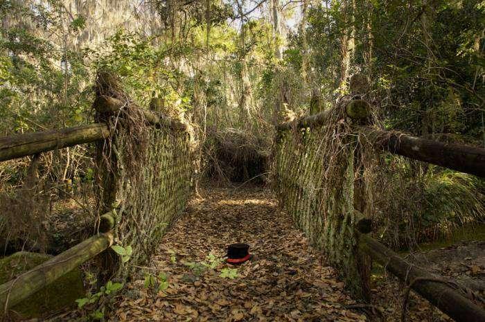 Заброшенный таинственный Дисней-парк (16 фото)