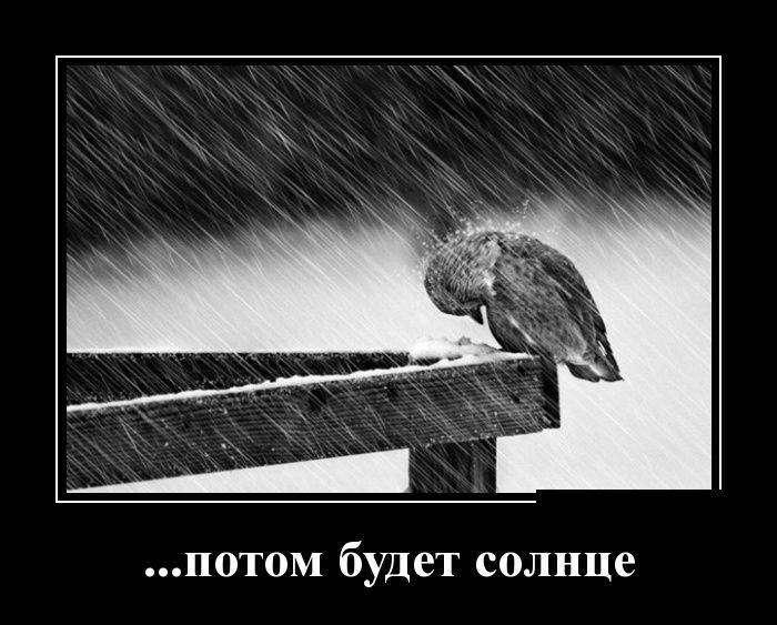 Демотиваторы на 28.03.2016г (30 фото)