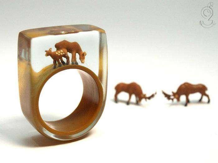 Маленькие истории из жизни внутри кольца (11 фото)