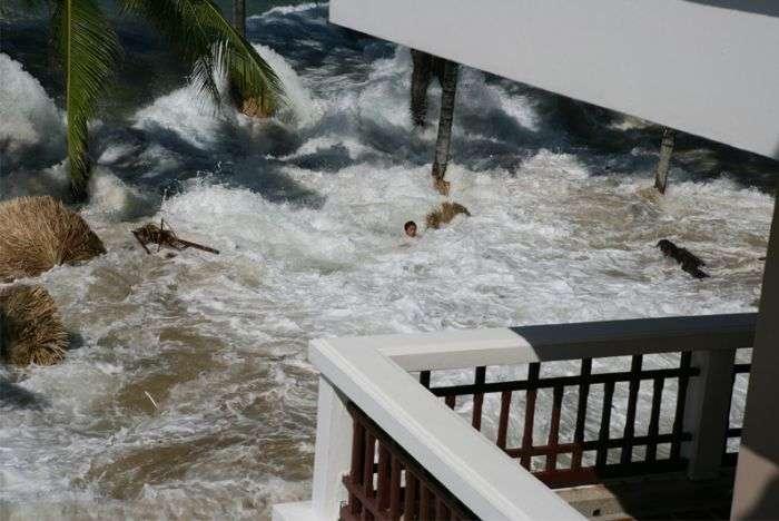 Привет, цунами (7 фото)
