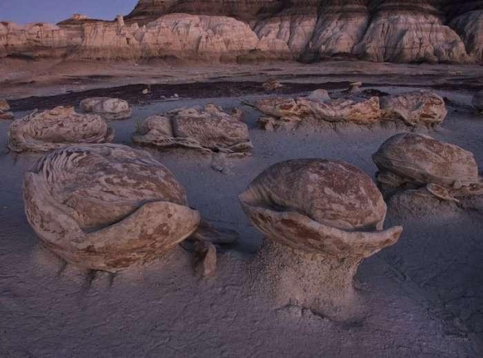 Инопланетные пейзажи пустоши Бисти (12 фото)