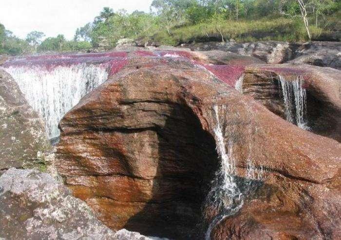 Каньо Кристалес – самая красивая река на Земле (37 фото)