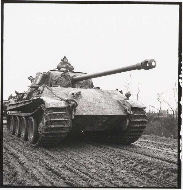 Т-34 против «Пантеры» (14 фото)