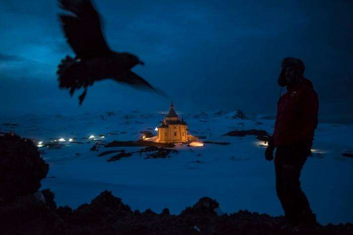 Дэниел Береулак назван лучшим фотожурналистом года (15 фото)