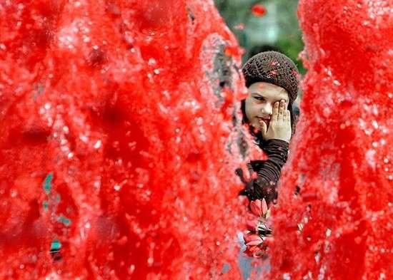 Кровавый фонтан в Будапеште (5 фото)