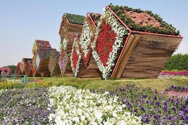 Уникальный сад в Дубае (9 фото)