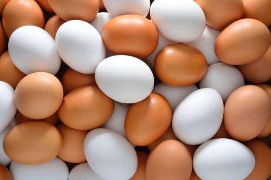 Это факт! Какая разница между белыми и коричневыми куриными яйцами?