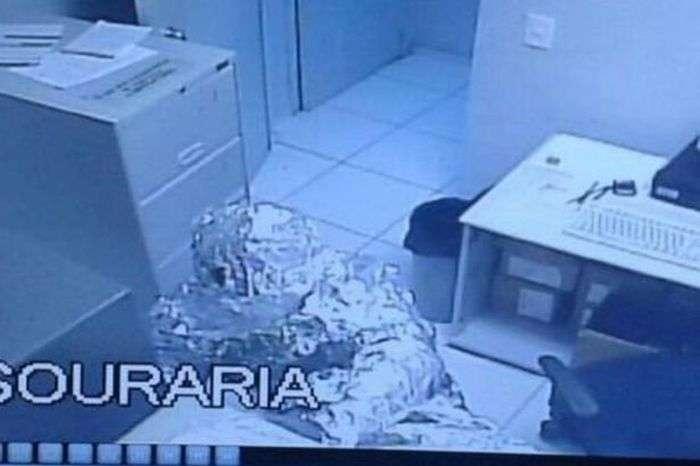 Умные грабители обошли защиту банка в Бразилии  (3 фото)