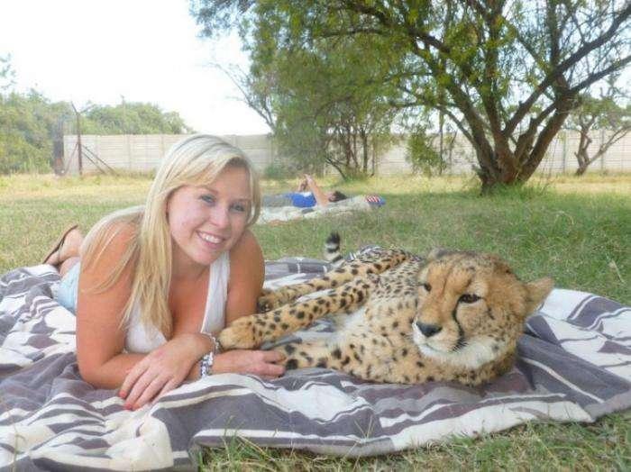 Девушка, подружившаяся с гепардом (10 фото)