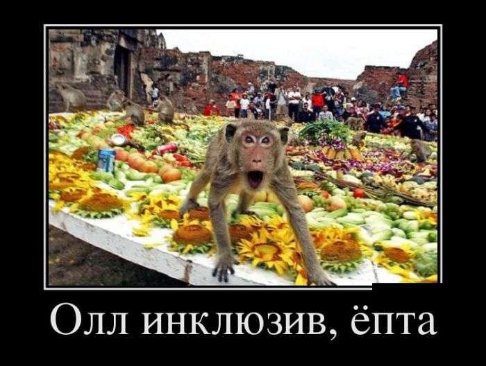 Демотиваторы на 15.04.2016г (30 фото)