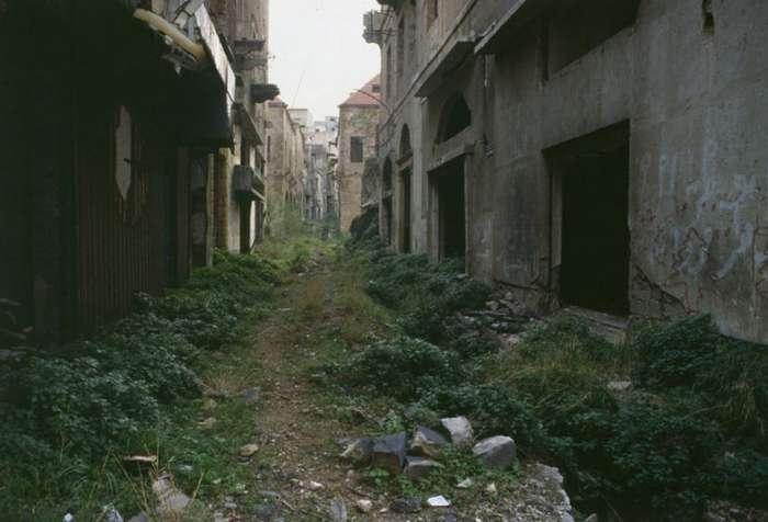Зеленая линия, Ливан. 1982 год