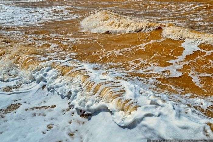 В Крыму воды Черного моря окрасились в желтый цвет (3 фото)