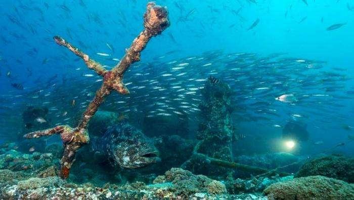 Затонувшие корабли (10 фото)