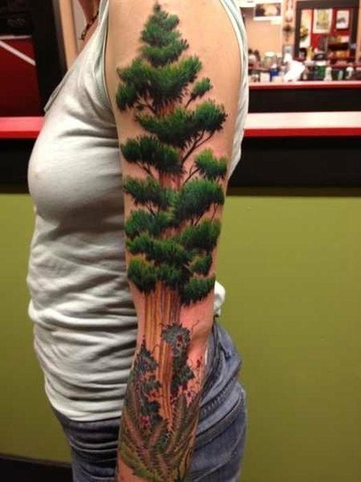 Тату с изображением деревьев.
