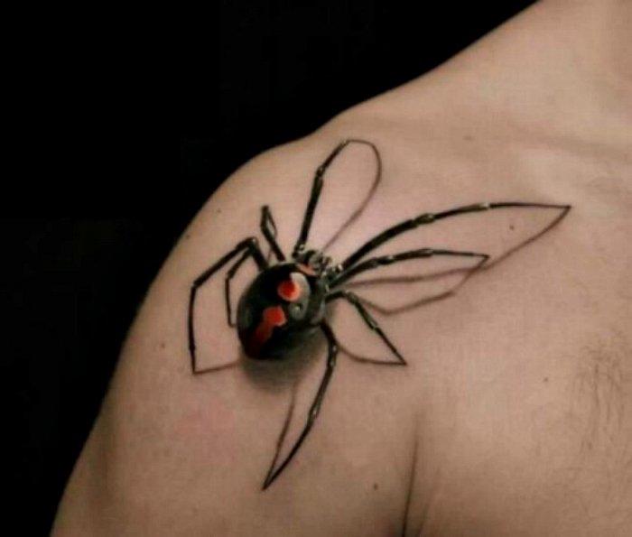 Трехмерное изображение паука.