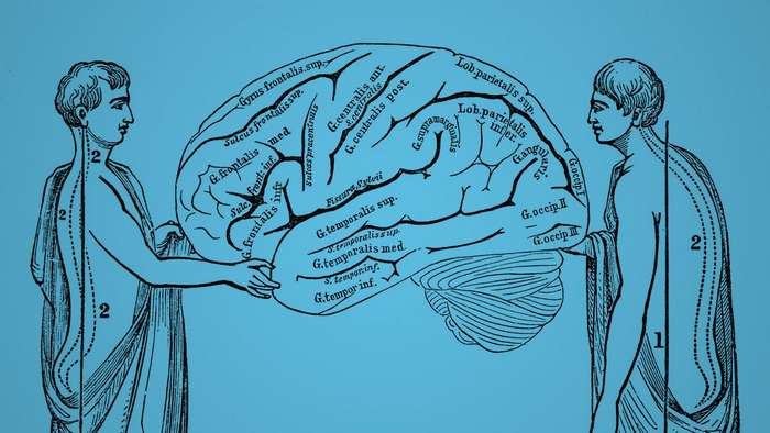Наука о правильном положении тела и о том, как это влияет на нашу жизнь