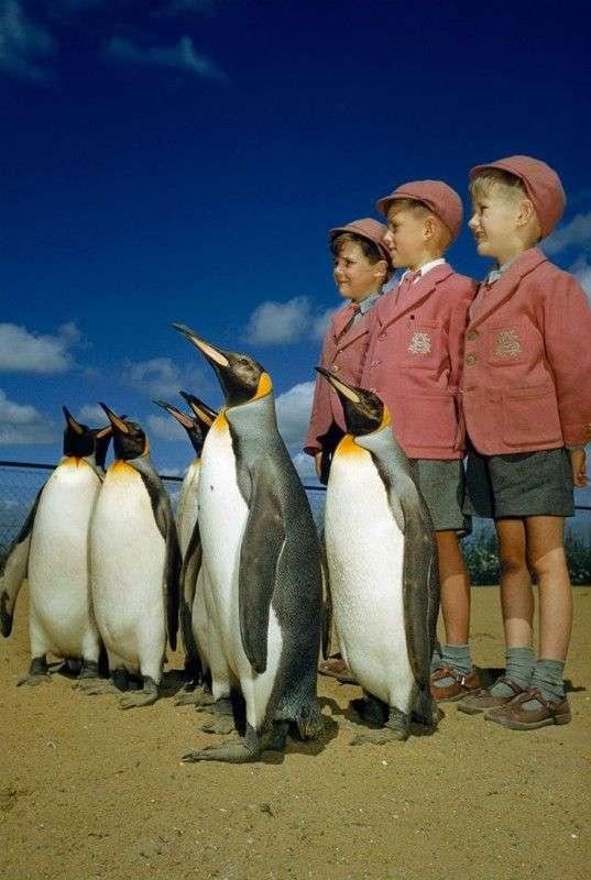 Неопубликованные ранее фотографии National Geographic
