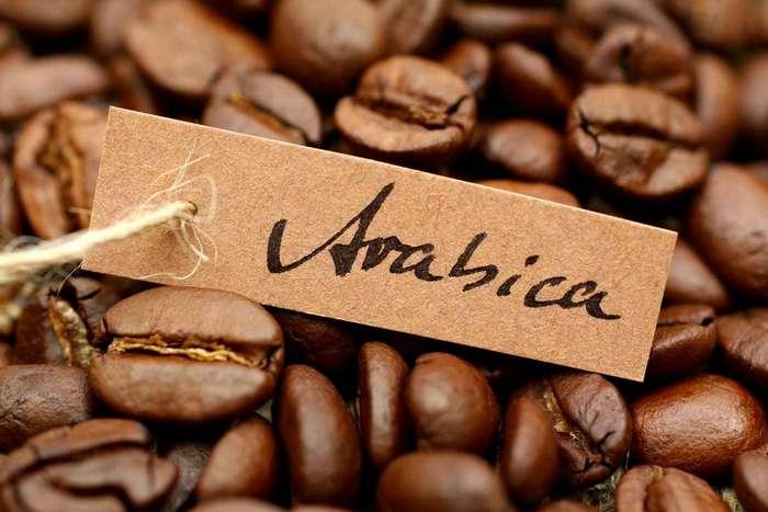 Самый дорогой кофе —