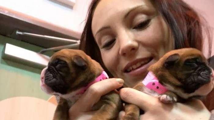 Эти супруги успешно клонировали своего пса после его смерти
