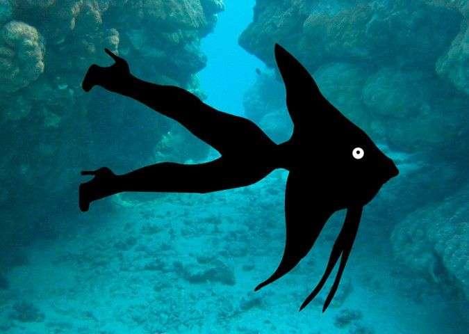 Рыбаки вытащили из воды «пришельца с человеческим носом»