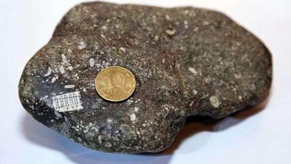 Странная находка: российские исследователи изучают микрочип возрастом 250 миллионов лет