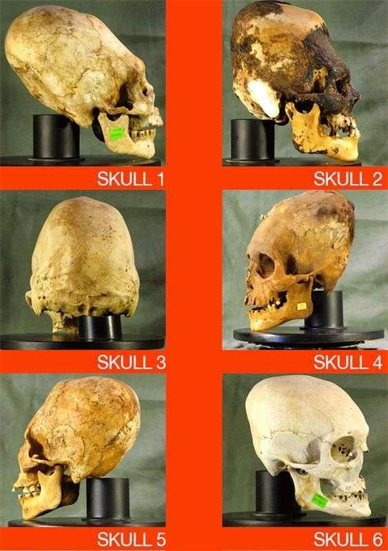 Находка в пустыни Паракас – вытянутые черепа и ДНК