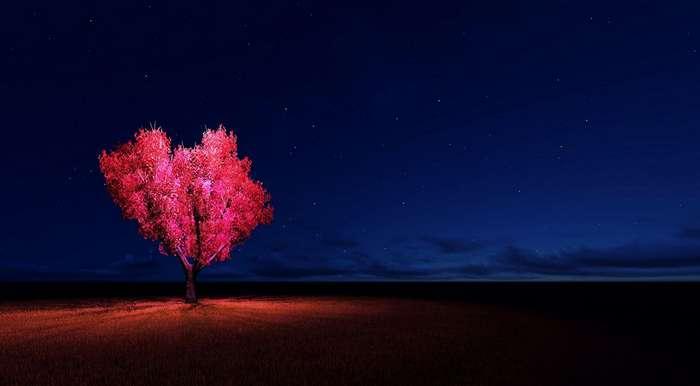 Природа, которая говорит о любви