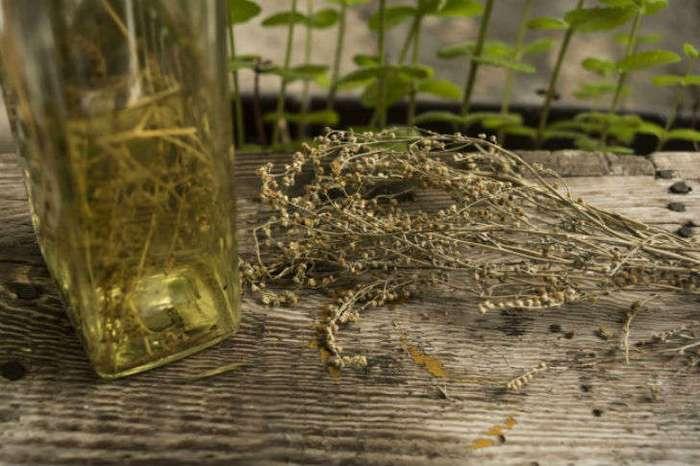 10 убийственных ароматов от комаров
