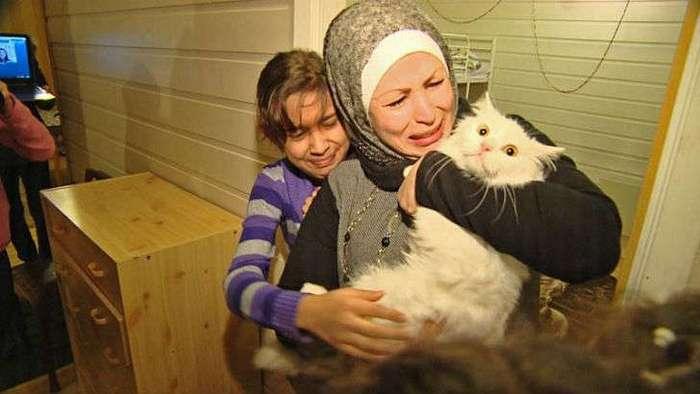 Потерявшийся кот вернулся в семью иракских беженцев, преодолев полмира