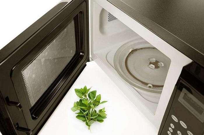 12 советов по использованию микроволновой печи не по прямому назначению