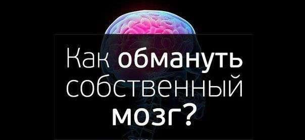 Как обмануть собственный мозг?