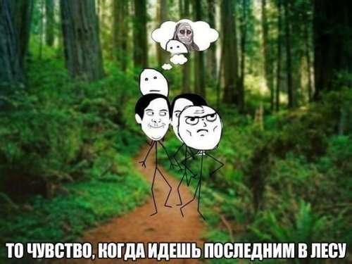 ФОТОМЕМЫ