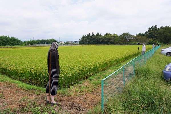 До приезда в Японию я думала, что это наши пугала страшные