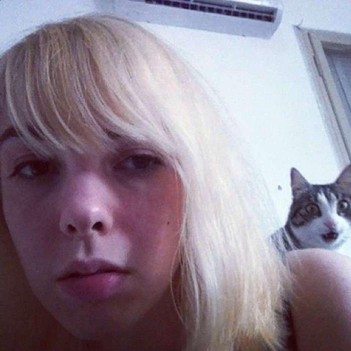 ФОтобомбы с кошками