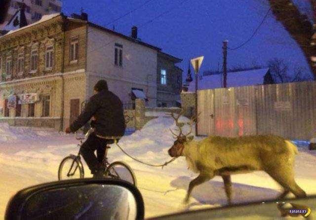 А тем временем в России - 56