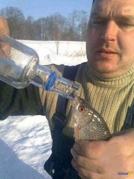 А тем временем в России - 63