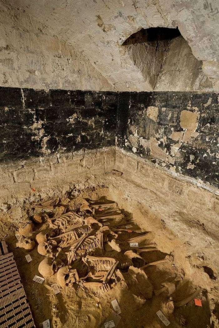 Массовое захоронение людей обнаружено под парижским супермаркетом