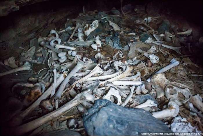Чеченский город мертвых