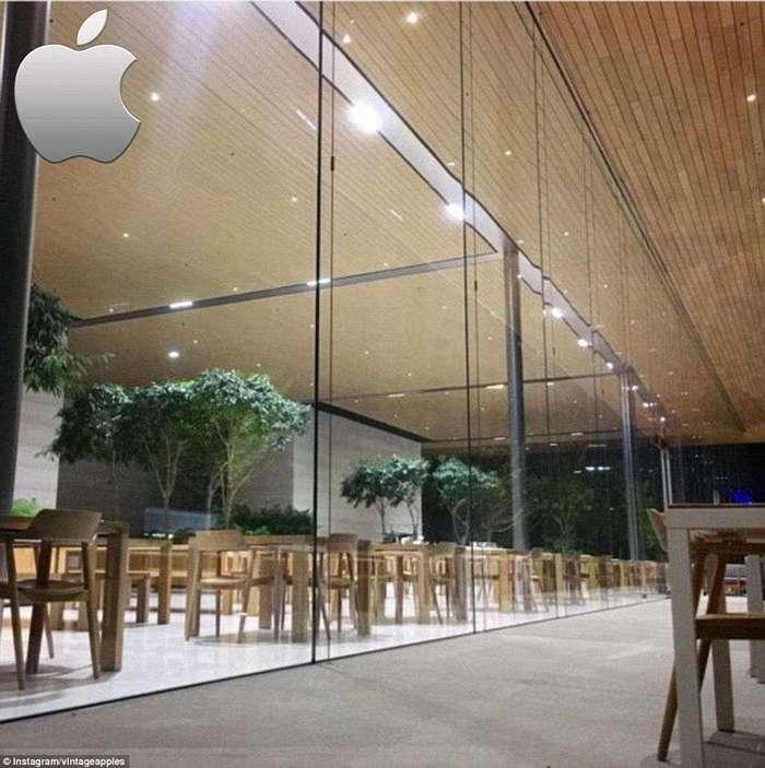 Что подают в корпоративных столовых Google, Apple и Pixar