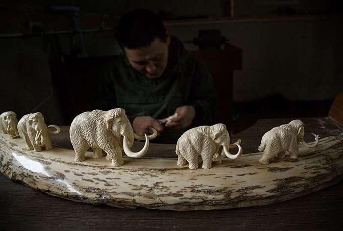 Добыча бивней мамонта в Сибири