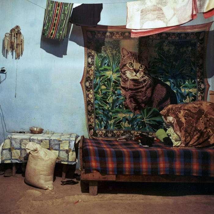 Законсервированные квартиры по-советски