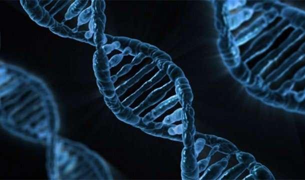 Факты про ДНК, благодаря которым вы узнаете о себе немного больше
