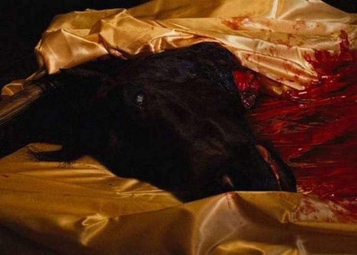15 малоизвестных фактов об эпичной криминальной драме «Крестный отец»
