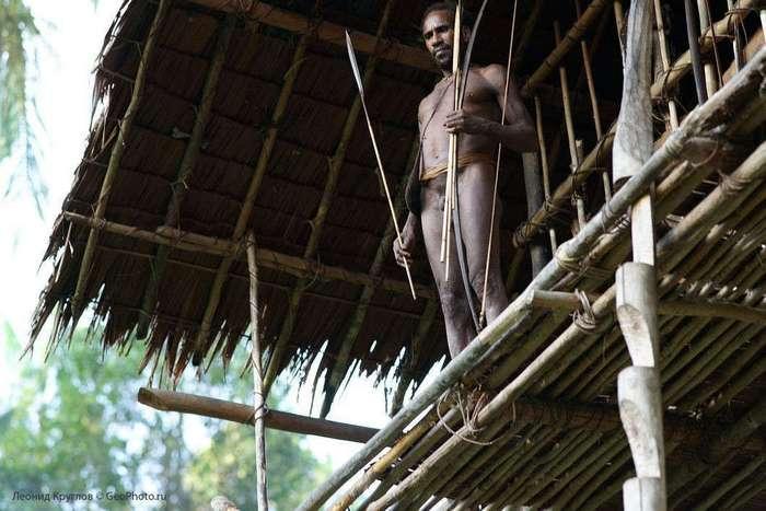 Короваи: люди, живущие на деревьях