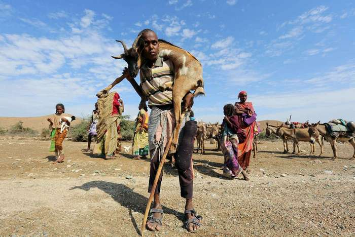 Засуха в Сомалиленде