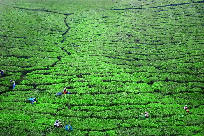 Фотограф 10 лет путешествовал по самым красивым местам, чтобы запечатлеть человеческую суть